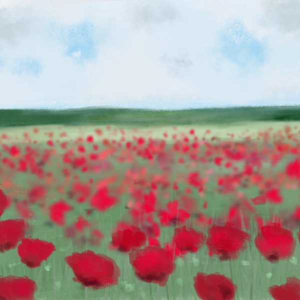 Among The Poppies
